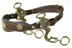 Baroque hackamore Academic Engraved Brown Brass